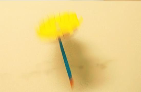 ppt白底一支花朵素材